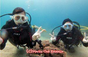 屋久島 ダイビング 体験ダイビング 海