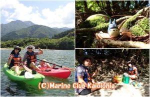 yakushima river kayak